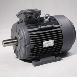 Moteur triphasé IE3 3kW 1000 tr/min Hauteur d'axe 132mm