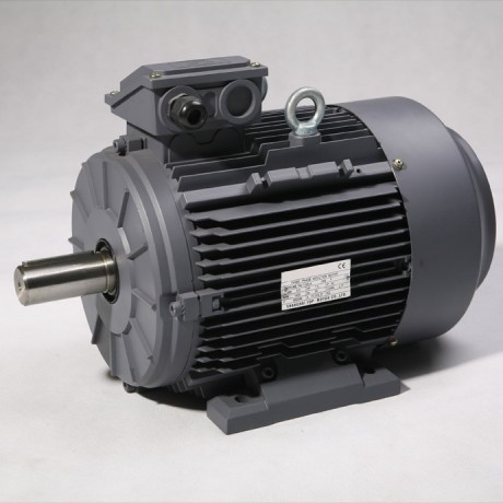 Moteur triphasé IE3 4kW 1000 tr/min Hauteur d'axe 132mm